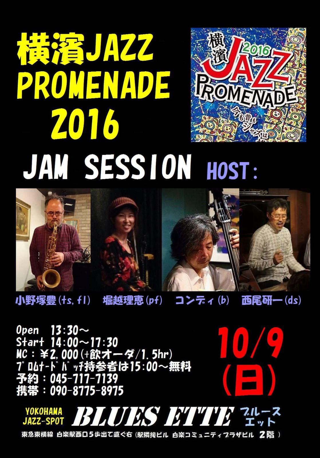 20161009_bluesette